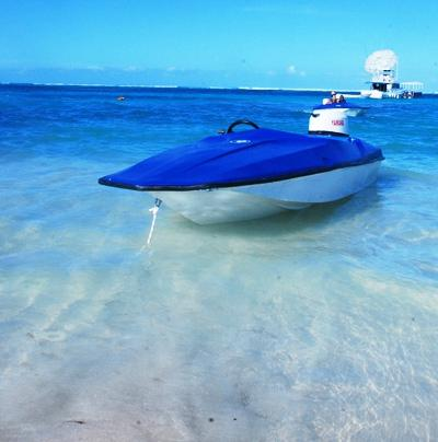 Weiler Caribbean Sea - Diving in Bayahibe Tours