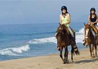 Beach and Jungle Horseback Riding