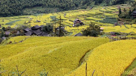 Liuying Valley