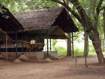 Galibore Fishing Camp