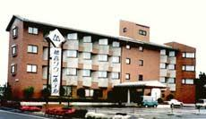 Hotaka Town Hotel