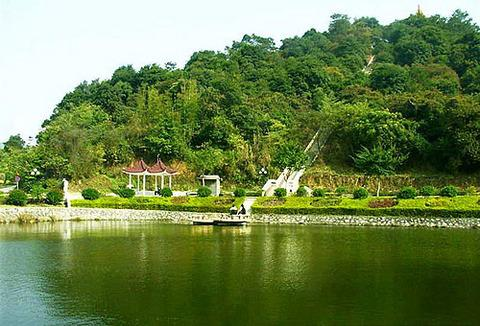 Maofeng Mountain Forest Park