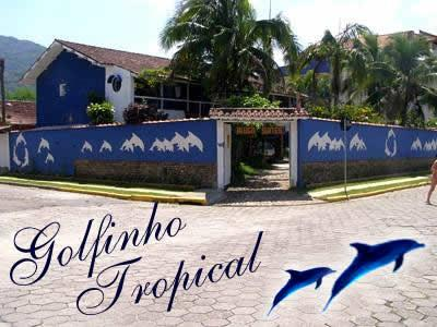 Golfinho Tropical