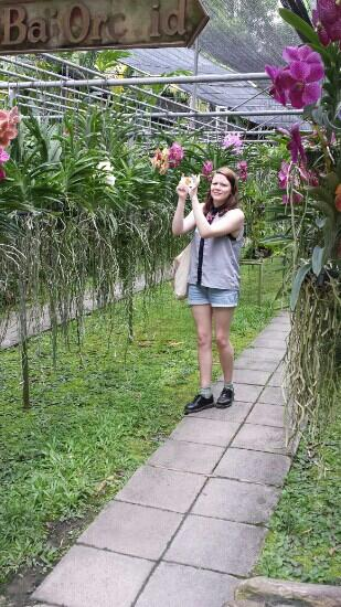 Orchid and Butterfly Farm