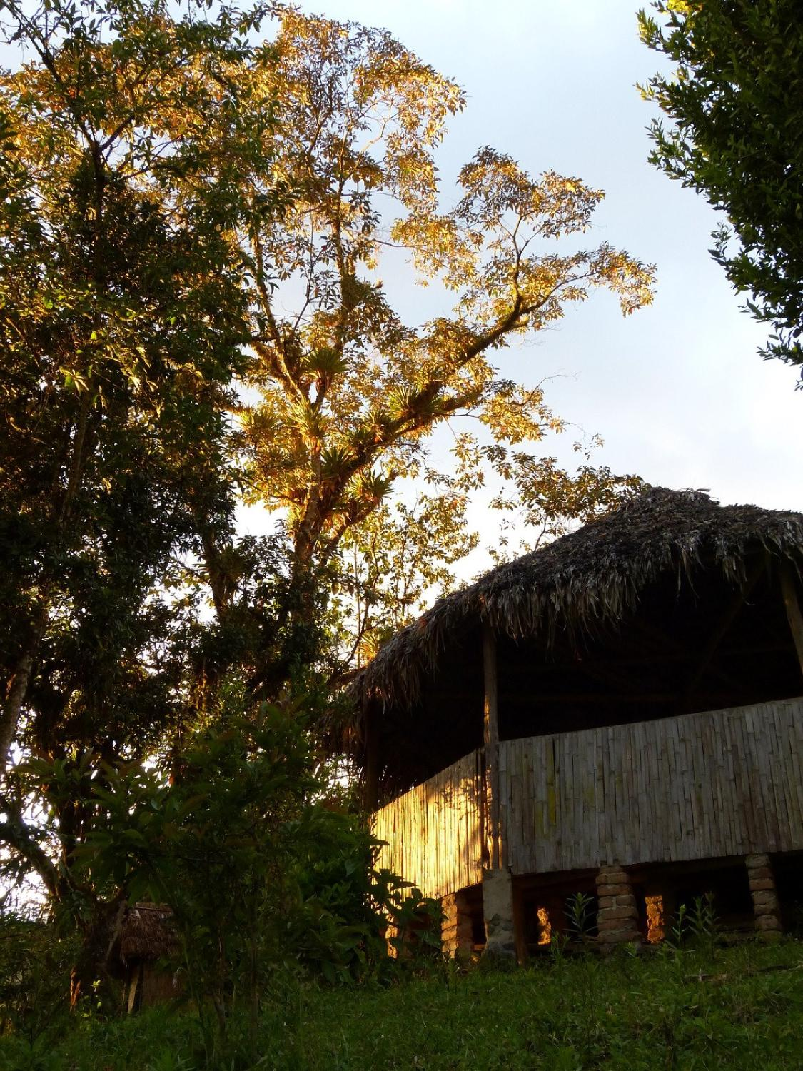 Intag Cloud Forest Reserve Lodge