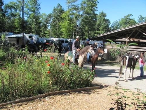 Timberridge Horse Campground
