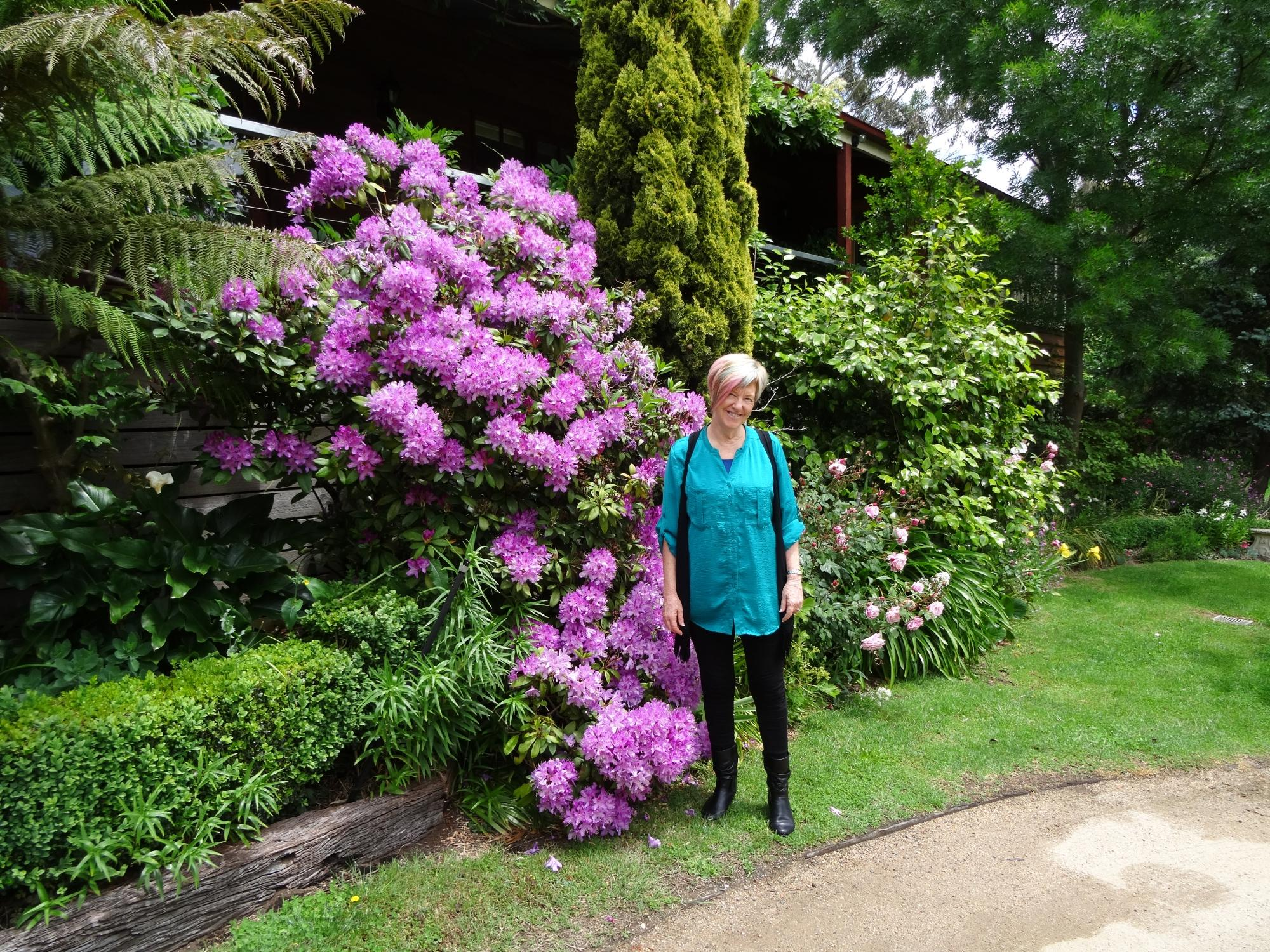Hollyhock Bed and Breakfast