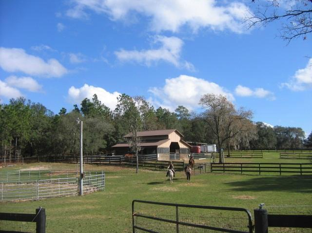 Lady Hawk Farm