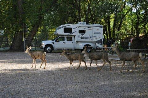Pikes Peak RV Park & Campground