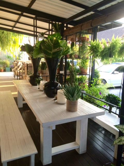 Woo cafe art gallery chiang mai restaurant reviews for J kitchen chiang mai
