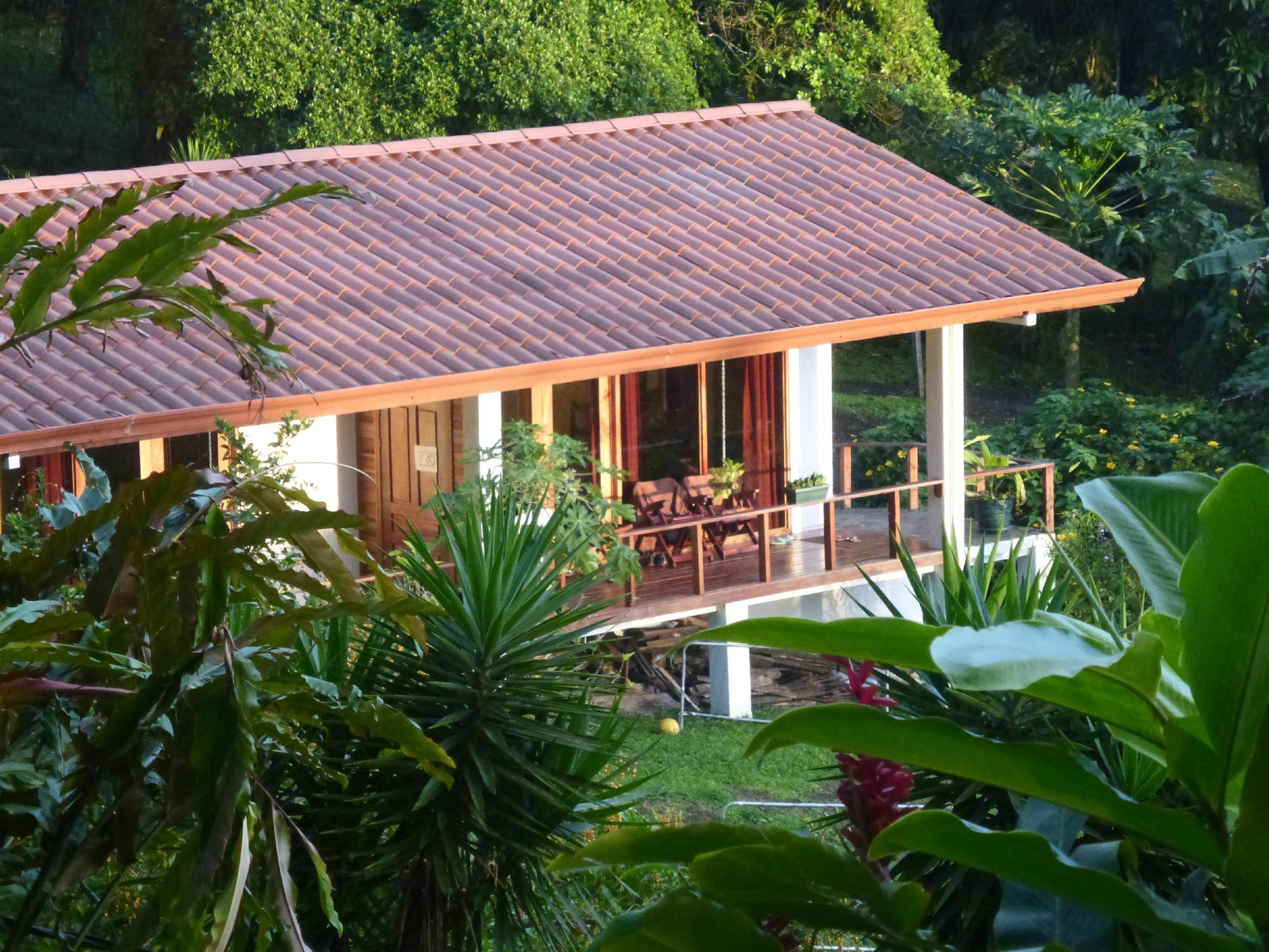 La Ceiba Tree Lodge
