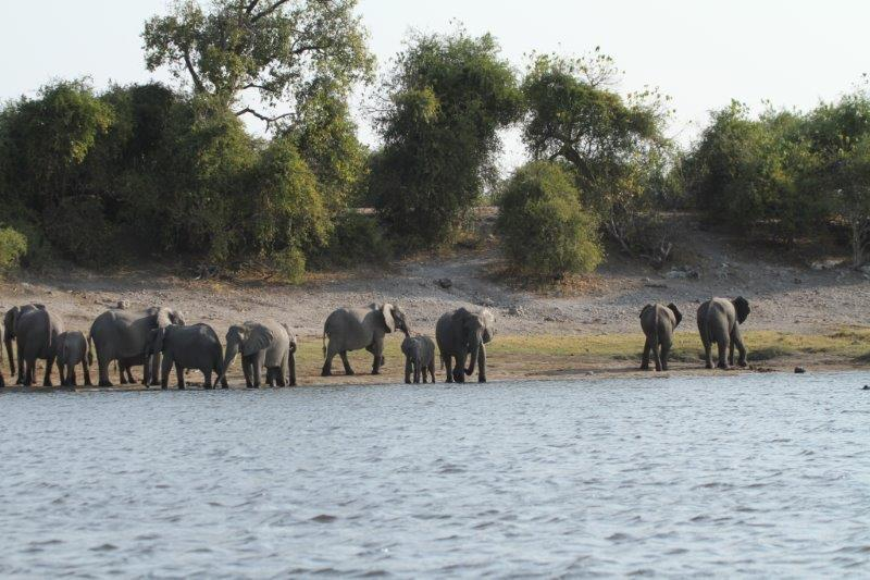 Ichobezi River Lodges