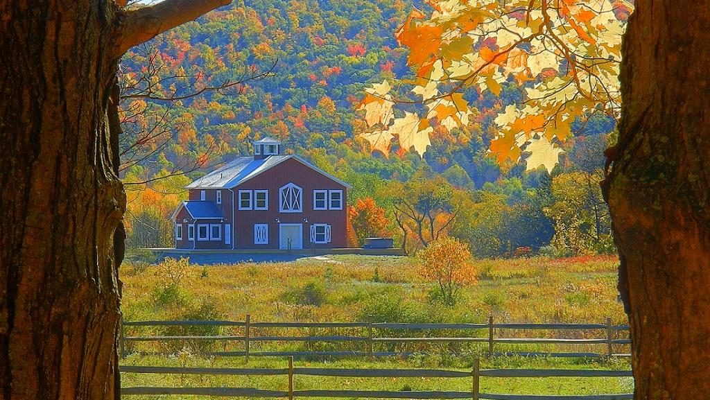 Mountain Horse Farm Bed and Breakfast and Spa