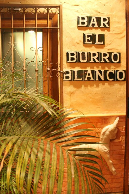 El burro blanco for Burro blanco