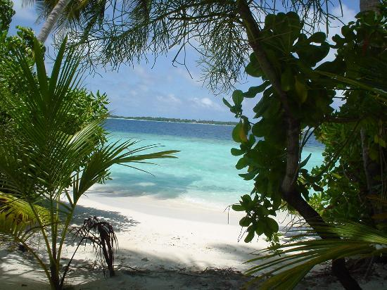 Photo of Villivaru Resort South Male Atoll