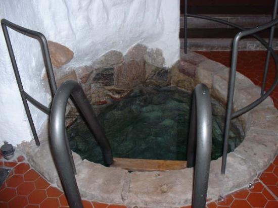 Lady Hamilton Hotel: Pic of the well