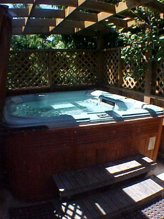 A Downtown Victoria Bed and Breakfast: Outdoor hot tub at An Ocean View Bed and Breakfast in Victoria