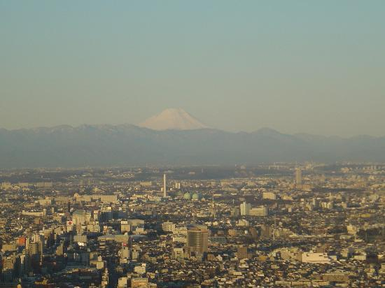   : View Mt Fuji