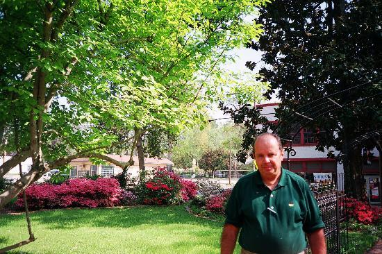 Southern Elegance Bed and Breakfast: Yours truly in Southern Elegance's garden