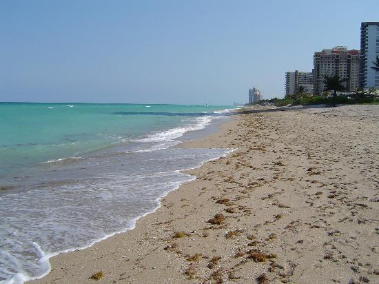 Hallandale Beach