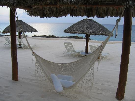 Presidente Inter-Continental Cozumel Resort & Spa: Siesta time!