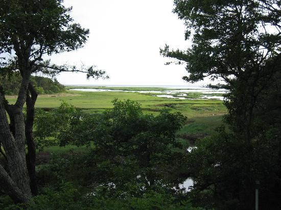 Photo of Blue Heron Cove Bed and Breakfast Wellfleet