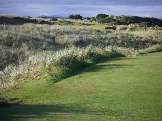 Bandon, : Pacific Dunes