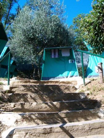 Photo of Plus Camping Michelangelo Florence