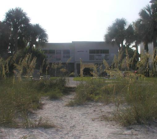Indian Rocks Beach, FL: View of the house from the beach