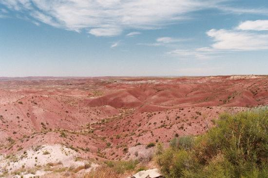 Parc national de Petrified Forest
