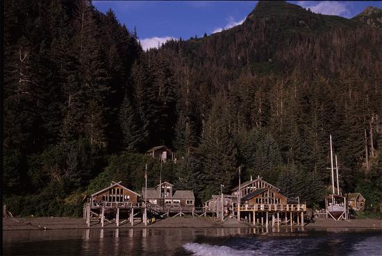 Photo of Alaska's Sadie Cove Wilderness Lodge Homer