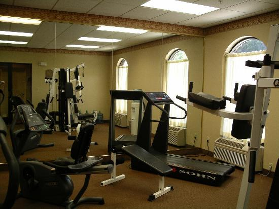 Holiday Inn Express Dover: exercise room