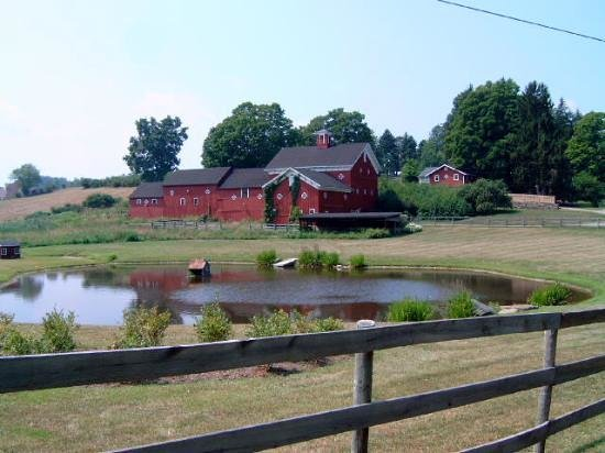 Rhinebeck, -: A farm down the road from the Inn