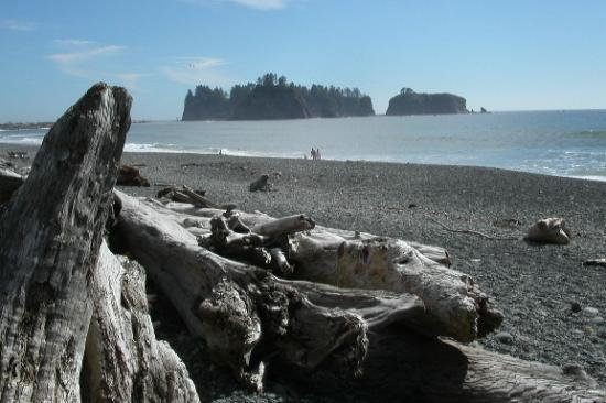 "Forks, Ουάσιγκτον: ""Sea Stacks"" and driftwood, Rialto Beach close by"
