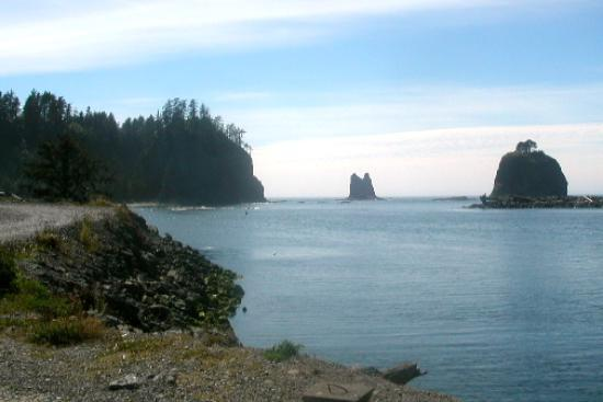 Manitou Lodge Bed and Breakfast: More Beautiful Rialto Beach