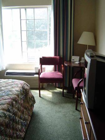 Holiday Inn Express Braselton Photo