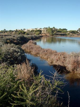 Almancil, Portugal : Nature trail, Quinta do Lago 