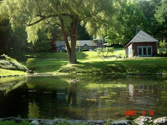 Stonover Farm Bed and Breakfast: Peaceful Duck Pond