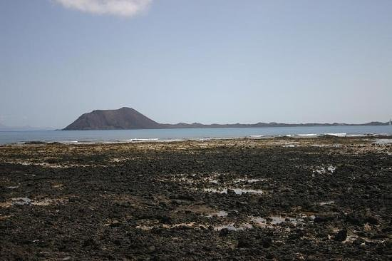 Photo of Jardin Canario Corralejo