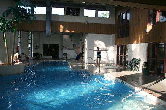 BEST WESTERN PLUS Brant Park Inn &amp; Conference Centre: Fun in the pool