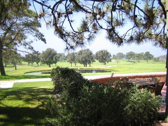 The Lodge at Torrey Pines: View from patio