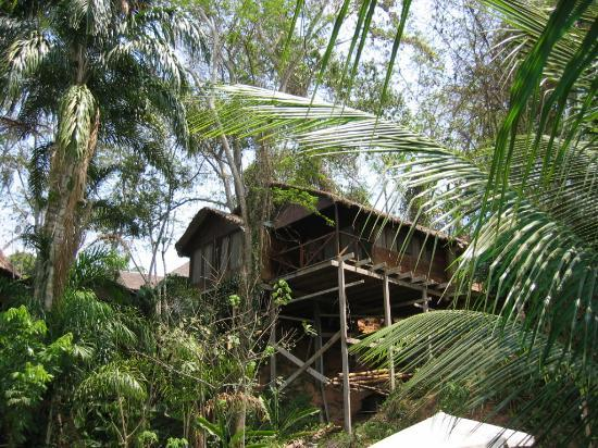 Photo of Wasai Maldonado Eco Lodge Puerto Maldonado