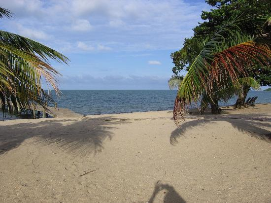 view from balcony at jaguar reef lodge belize picture. Black Bedroom Furniture Sets. Home Design Ideas