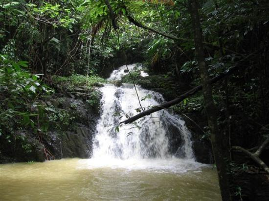 Hopkins, Belice: Mayflower Hike Waterfall