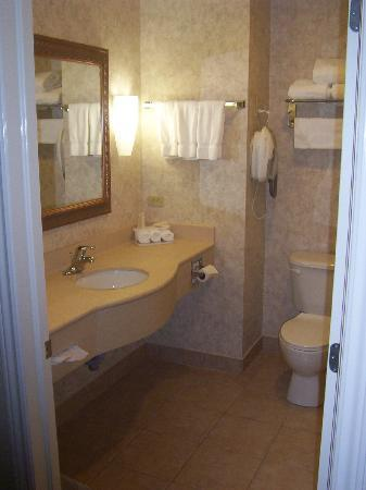 Holiday Inn Express Suites Gananoque: Bathroom