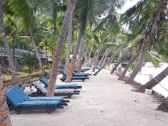 Coco de Mer - Black Parrot Suites : Relax on a hammock or lounge chair