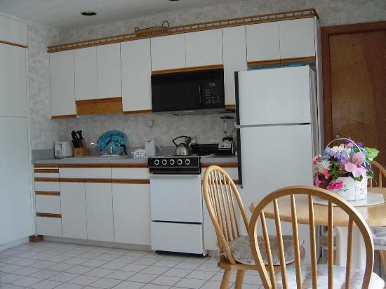 East Shore Resort Apartment Motel: Kitchen in unit#6