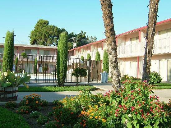 Photo of Marco Polo Motel Visalia