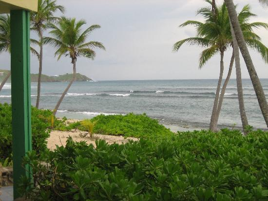 The Palms at Pelican Cove: View From Our Room at the Cormorant Hotel, St. Croix