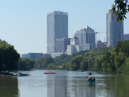 Milwaukee, WI : Framed by the downtown skyline, paddleboats float on a pond.